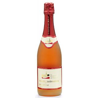 2019 Pinot Noir Rosé trocken - Vinum Autmundis