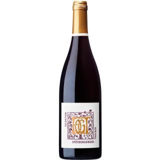 2015 Spätburgunder Qualitätswein Rotwein trocken - Weingut Fogt
