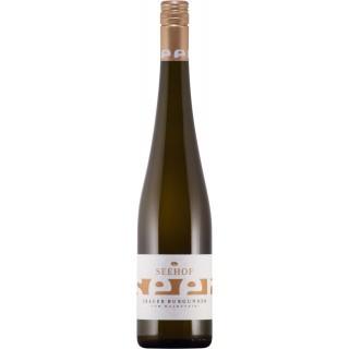 2018 Grauer Burgunder vom Kalkstein trocken - Weingut Seehof