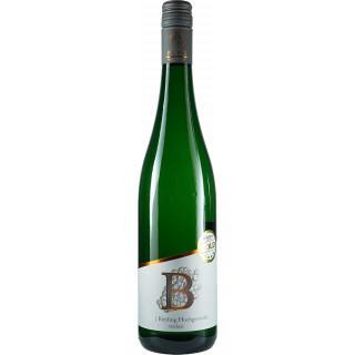 2019 Riesling Hochgewächs trocken - Weingut Burg