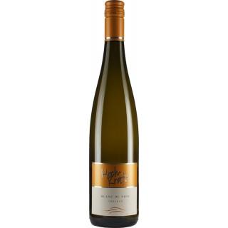 2018 Blanc de Noir trocken - Weingut Hoch-Kraft