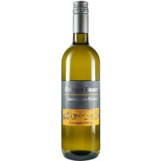 2020 Sauvignon Blanc - Weingut Bauer Zaussenberg