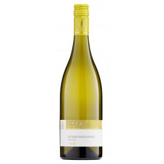 2020 Weißer Burgunder - vom Muschelkalk - trocken - Weingut Apel