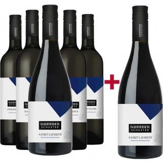 5+1 Traditions-Rotweine Probierpaket - Weingut Rainer Wein