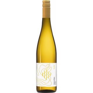 2018 Cabernet Blanc trocken Bio - Weingut Forsthof