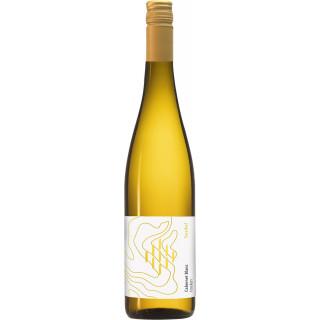 2020 Cabernet Blanc trocken Bio - Weingut Forsthof