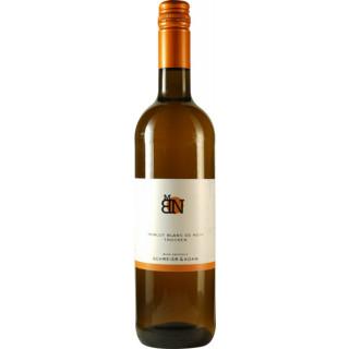 Merlot Blanc de Noir trocken - Sektkellerei Schreier & Kohn