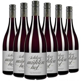 Spätburgunder 5+1 Paket - Weingut Schlossmühlenhof