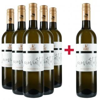 5+1 Paket Weinviertel DAC - Weingut Kurz