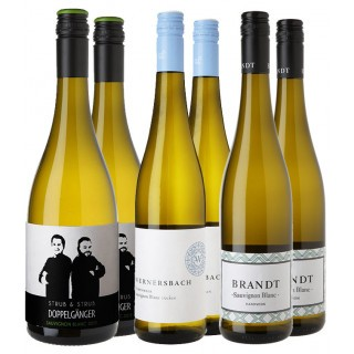 Sauvignon Blanc Entdecker-Paket