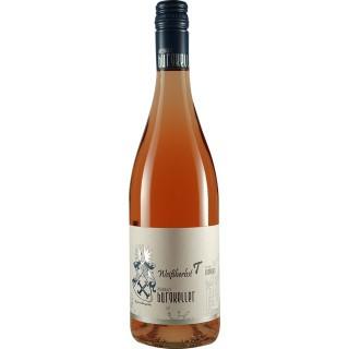 2020 Weißherbst Spätburgunder trocken - Weingut Burgkeller