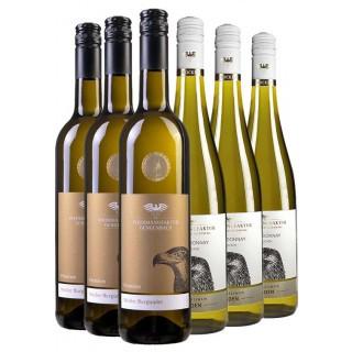 Spargelwein-Paket - Weinmanufaktur Gengenbach