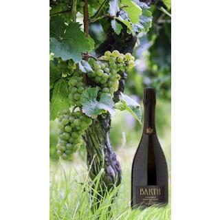 2013 Schützenhaus Riesling Sekt - Brut nature BIO 1,5L - Barth Wein- und Sektgut