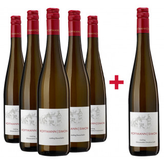 5+1 Riesling Paket BIO - Weingut Hoffmann-Simon