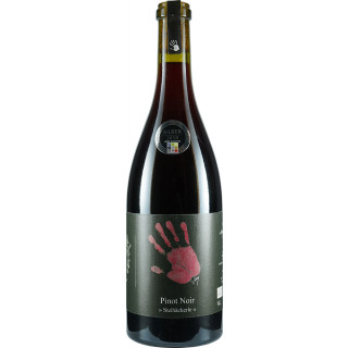 2016 Pinot Noir Steihäckerle trocken Bio - Ökologisches Weingut Hubert Lay