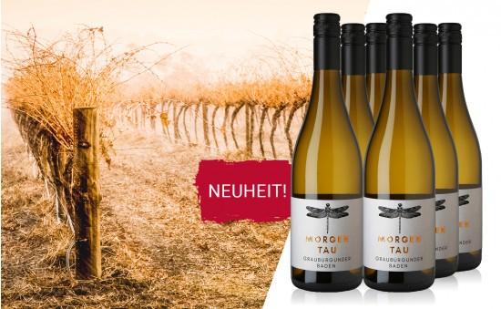 WEIN-HIGHLIGHT NR. 19 Grauburgunder Neuheit aus Baden