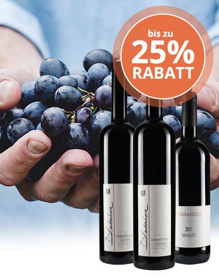 Großartig gereifte VDP-Rotweine aus Baden