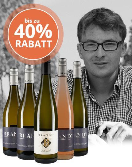 Rheinhessische Aufsteiger-Weine zum Hammer-Preis