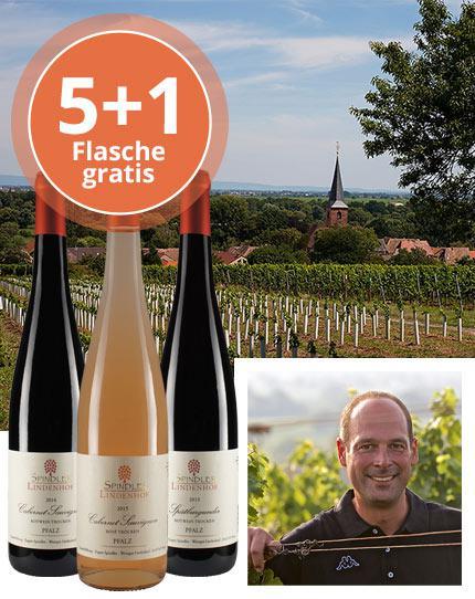 Eigenständiger Rosé & kraftvolle Rotweine aus der Pfalz
