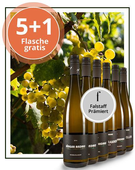 Die 'Falstaff'-Triumphweine!