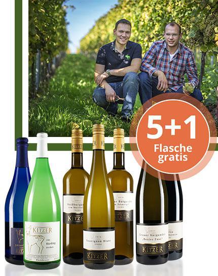 Harmonische & präzise Weine aus dem westlichen Rheinhessen