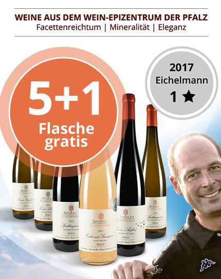 Facettenreiche & kräftige Weine aus dem Wein-Epizentrum der Pfalz