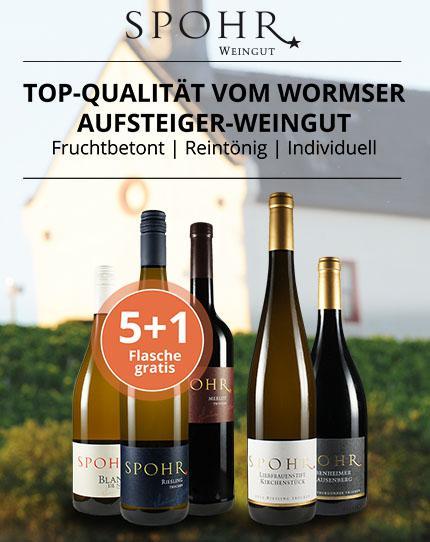 Individuelle Rheinhessen-Weine mit reintöniger Frucht