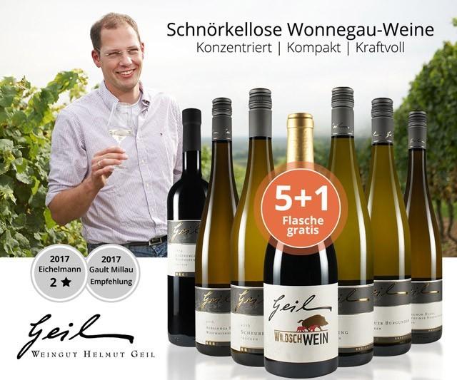 Konzentrierte, kompakte & kraftvolle Wonnegau-Weine