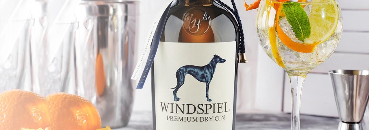 Unsere Gin Auswahl
