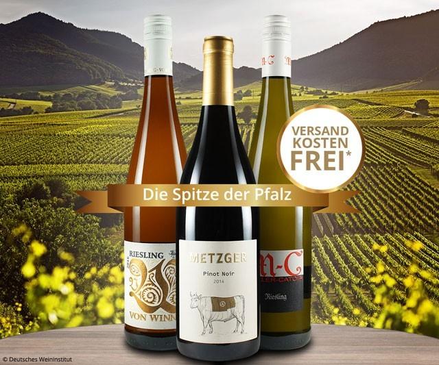 Die Spitze der Pfalz-Weine