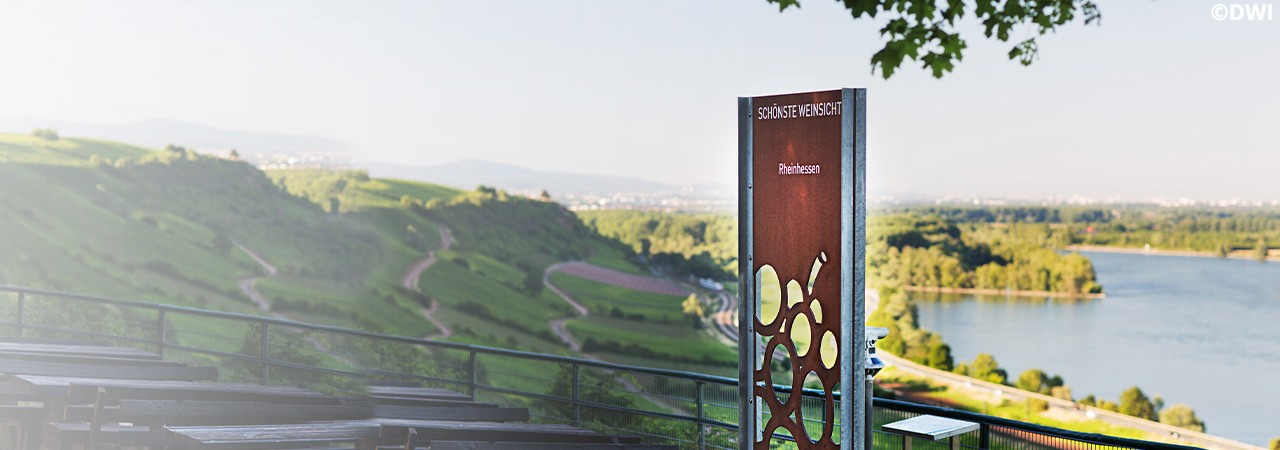 Top Angebote aus Rheinhessen!