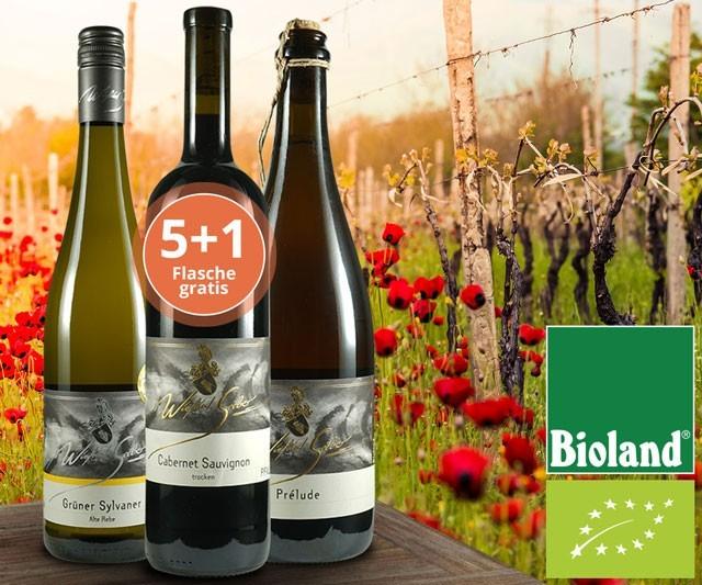 Harmonische Weine vom Bio-Pionier!
