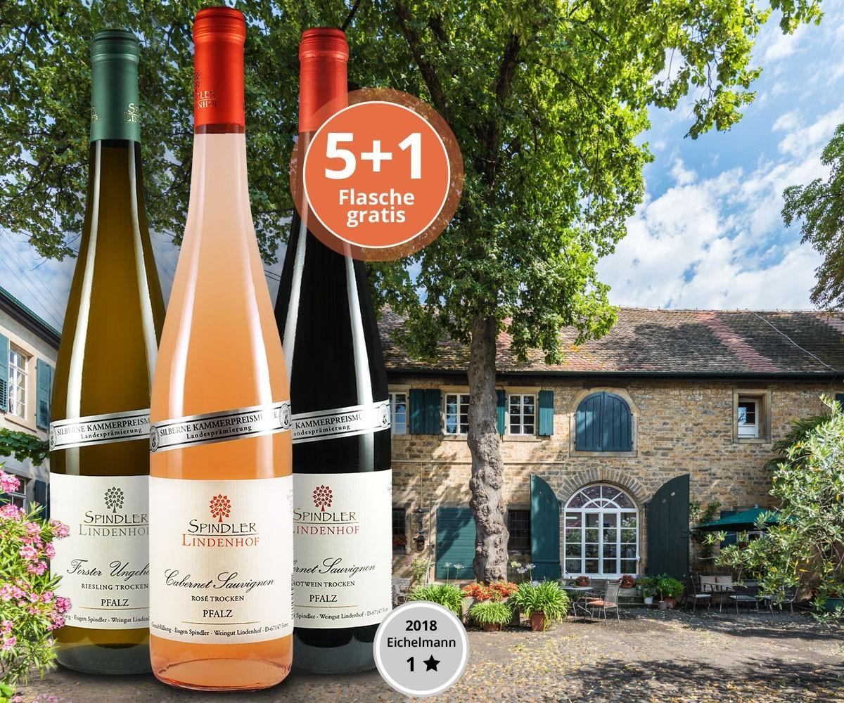 Authentische Weine aus dem Wein-Epizentrum der Pfalz