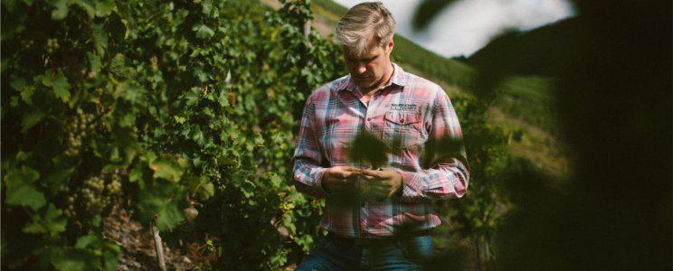 Weingut Schlagkamp-Desoye: Qualitätswein