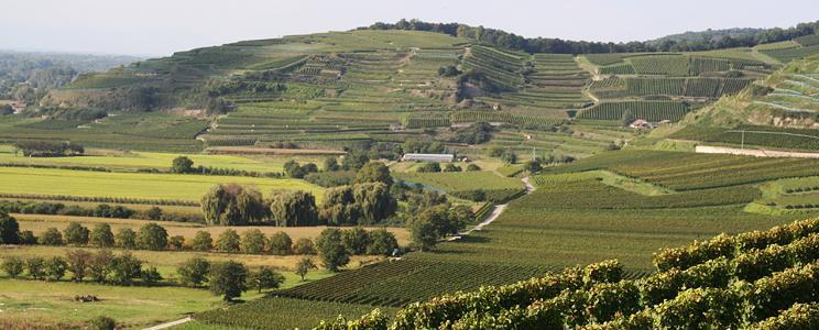 Oekologisches Weingut Hubert Lay