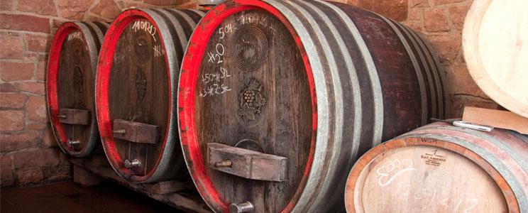 Weinbau Stritzinger: 2018