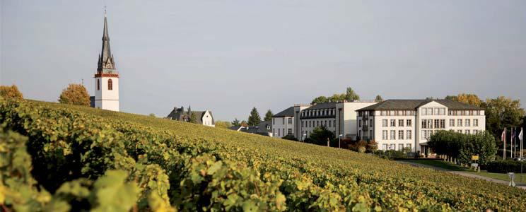 Weingut Schloss Reinhartshausen