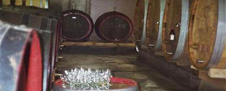 Weingut Peter Lingen