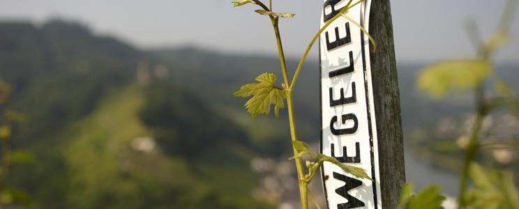 Wegeler - Bernkastel