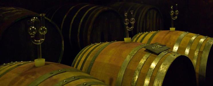 Weingut Caspari-Kappel