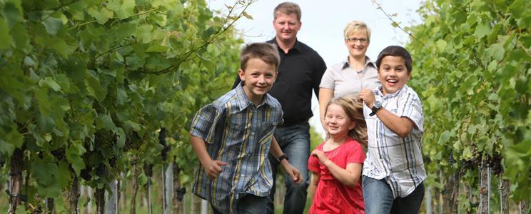 Familienweingut Braun