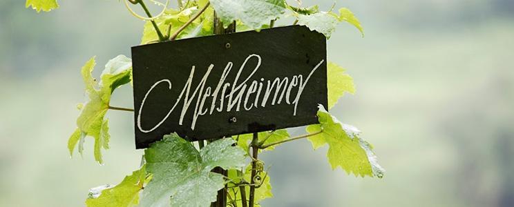 Melsheimer