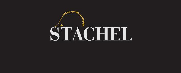 Erich Stachel