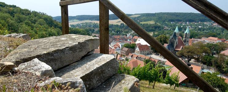 Winzervereinigung Freyburg-Unstrut: Portugieser