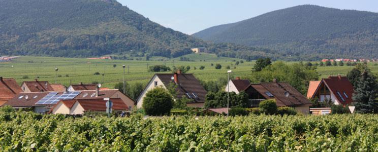 Theodorus Wein- und Sektgut