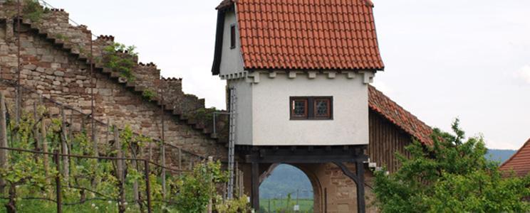 Schlossgut Hohenbeilstein  (Seite: 2)