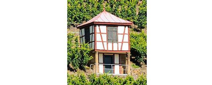 Weingut Disibodenberg