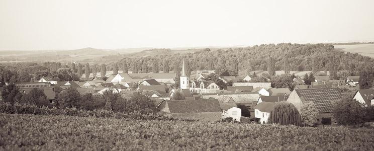 Lawall-Stöhr