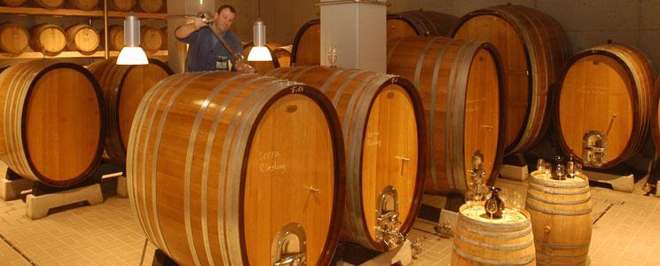 Bottwartaler Winzer: Rotwein