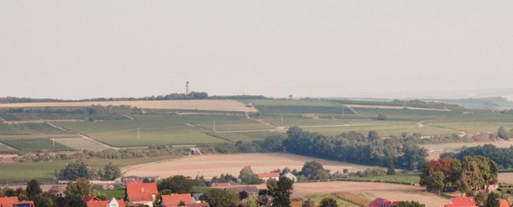Weingut Schlossmühlenhof